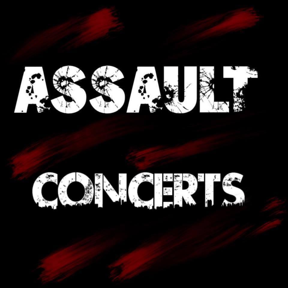logo assault